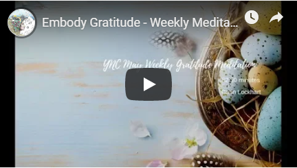 Embody Gratitude Weekly Meditation image