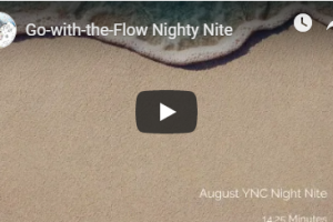 Go with the Flow Nighty Nite