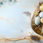 Eggs and Feathers on wood
