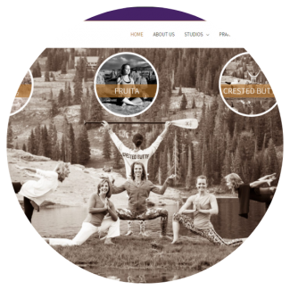 Small view of the Thrive Crested Butte website